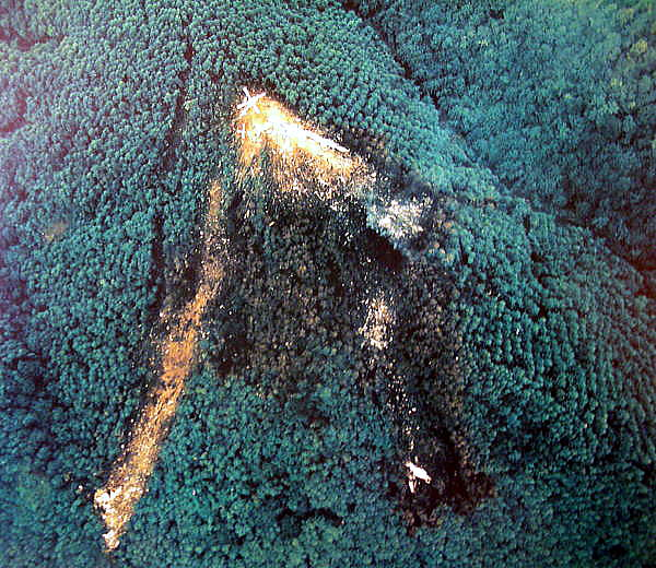 インディペンデント航空1851便墜落事故